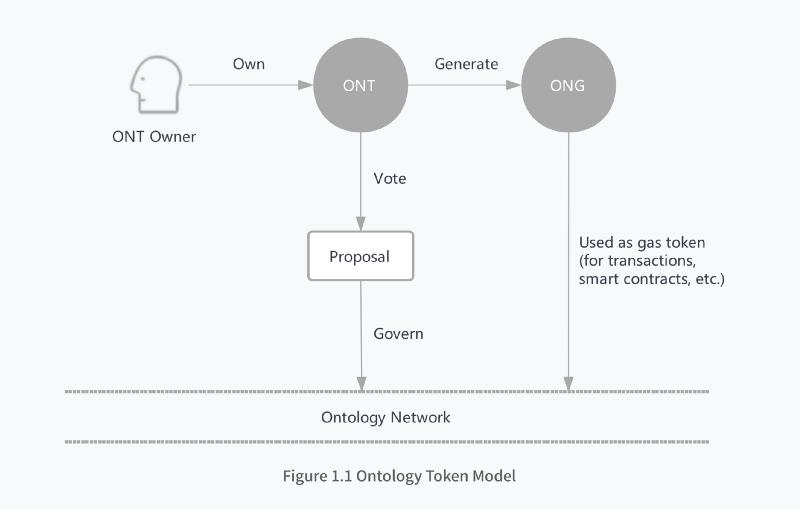 Ontology本体网络经济模型