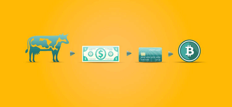 为什么加密货币是资本主义的下一个操作系统-进化是无情的